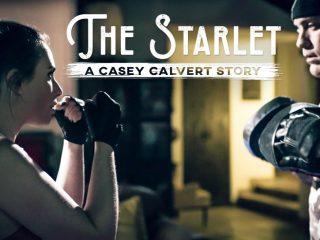 The Starlet: A Casey Calvert Story, Scene #01
